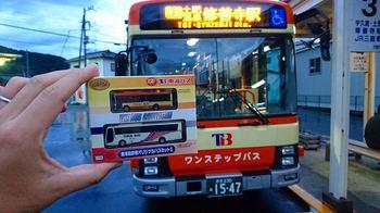 DSC_3686.jpg